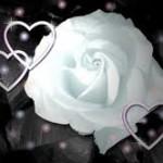 Hechizo de amor para atraer a la persona que se te hace la difícil