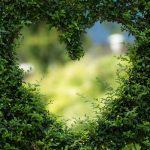Hechizos De Amor Poderosos Y Magia Blanca